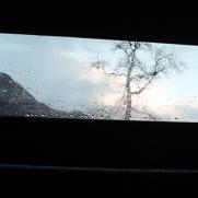 Jimmie window